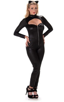 Black Catwoman Suit Adult Costume