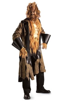 Big Bad Wolf Fairy Tale Adult Costume