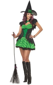 Hocus Pocus Sexy Green Adult Witch Costume