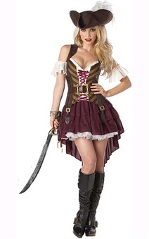 Sexy Swashbuckler Adult Pirate Costume