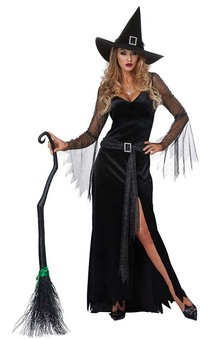 Rich Witch Adult Sexy Classy Witch Costume