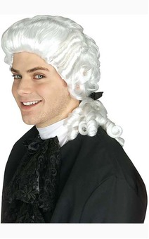 Colonial Man Adult Judge Wig