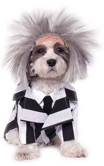 Beetlejuice Dog Pet Costume