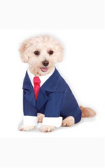 Blue Business Suit Pet Dog Costume