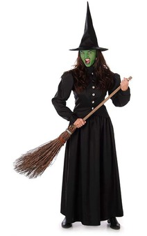 Wicked Witch Wizard Of Oz Adult Costume