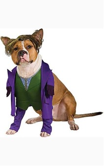 Joker Dark Knight Pet Dog Costume