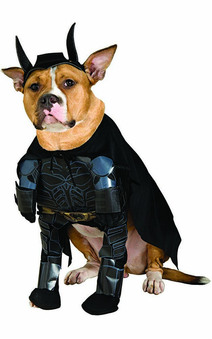 Batman Dark Knight Pet Dog Costume