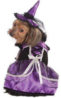 Purple Witch Pet Dog Halloween Costume