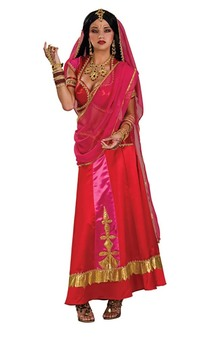 Bollywood Beauty Indian Adult Costume