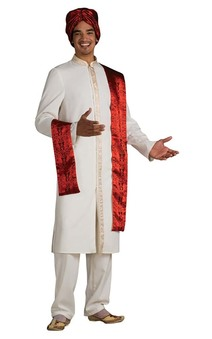 Bollywood Guy Adult Indian Costume
