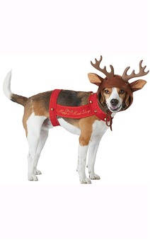 Reindeer Dog Christmas Pet Costume