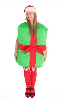 Christmas Gift Box Adult Costume